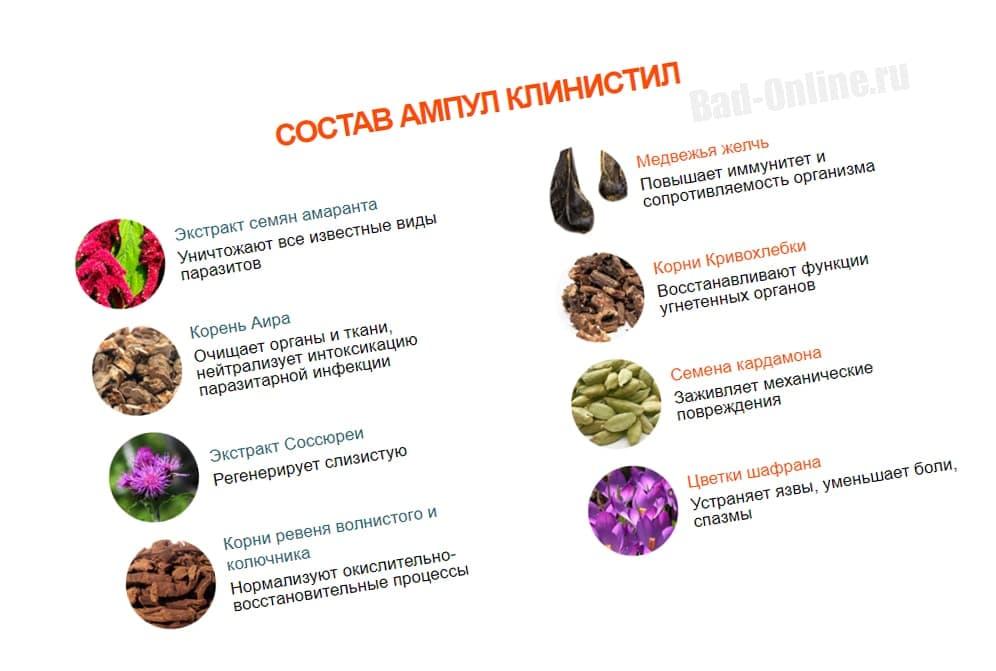 Полный состав препарата Klinistil