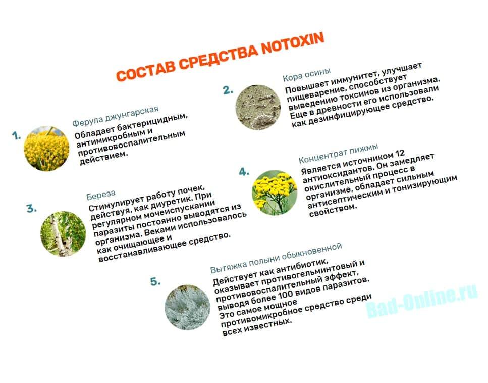 Полный состав Нотоксин