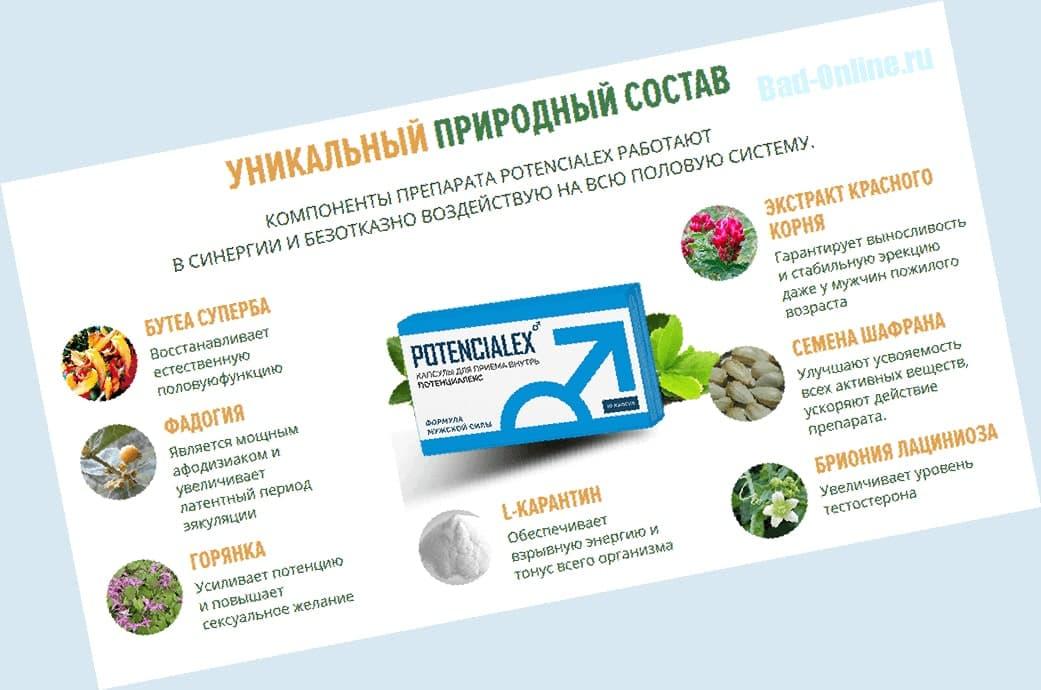 Полный состав препарата Потенциалекс