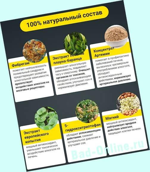 Полный состав препарата Алкозерокс от алкоголизма на сайте Bad-Online.ru