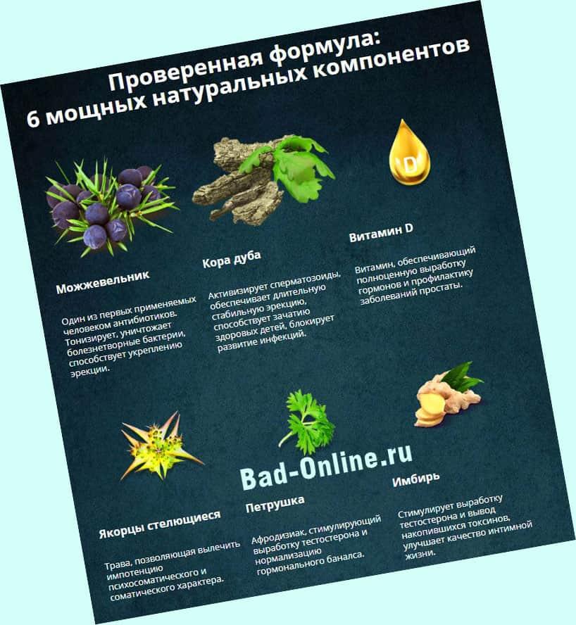 Полный состав препарата Эронестил для потенции на сайте Bad-Online.ru
