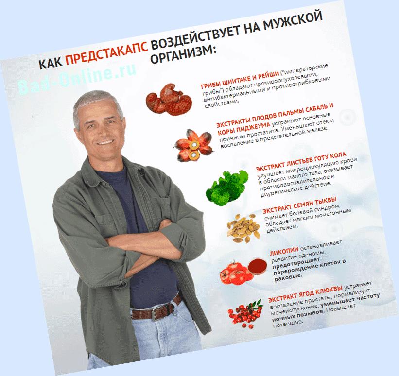 Полный состав препарата Предстакапс от простатита на сайте Bad-Online.ru