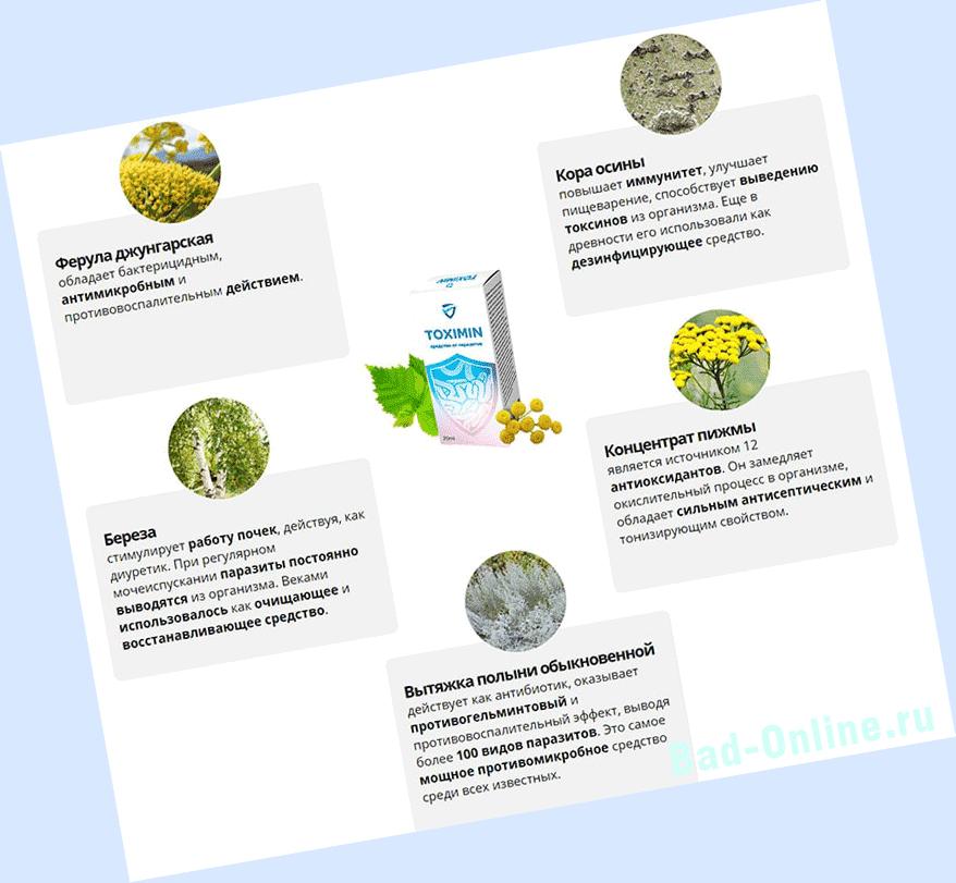 Полный состав препарата Toximin от паразитов на сайте Bad-Online.ru