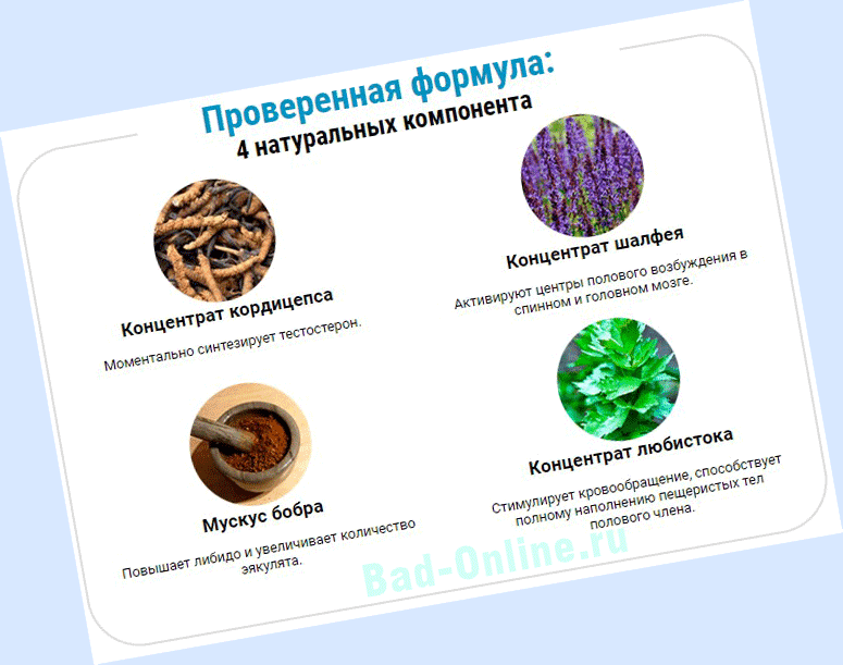 Полный состав препарата Вирекс на сайте Bad-Online.ru